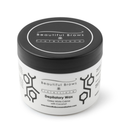 BB - Coconut Scented Wax